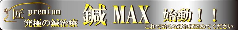 鍼MAX治療について